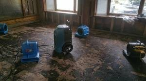 Water and Mold Damage Restoration In Progress