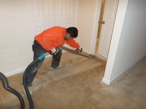 Disaster Restoration Expert Cleaning Carpet After Flooding